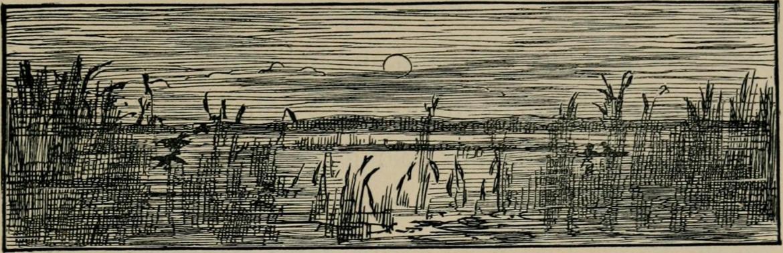 Pod słońcem Sahary. Ilustracja z 1904 roku. Źródło: https://flic.kr/p/owkQtV