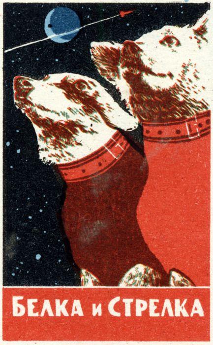 Biełka i Strielłka czyli suczki kosmonautki. Źródło: http://pictify.com/328769/canine-cosmonauts-belka-and-strelka