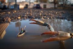 small-world-photographs-by-kurt-moses