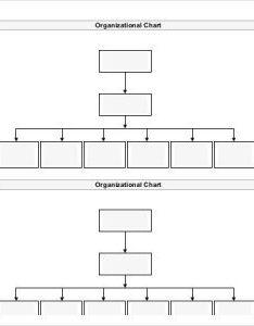 free blank organizational chart www