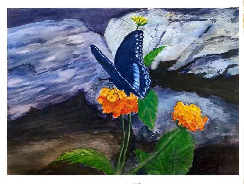 Swallowtail, Lantana & Rocks
