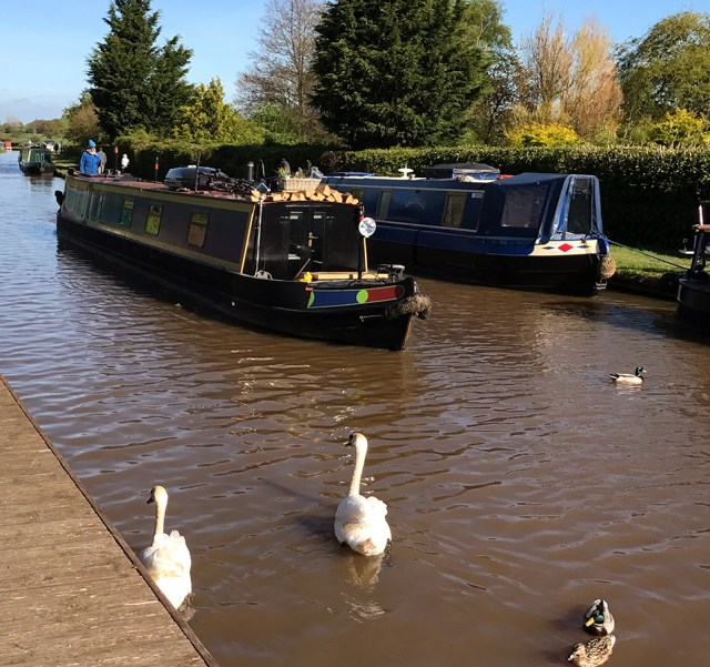 Down-By-The-Canal-2