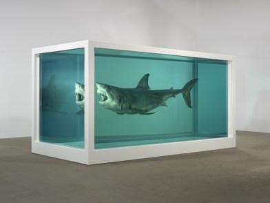shark-3q-3