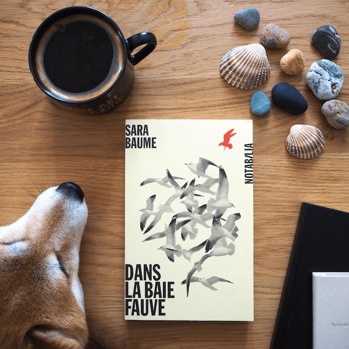 Dans la baie fauve – Sara Baume