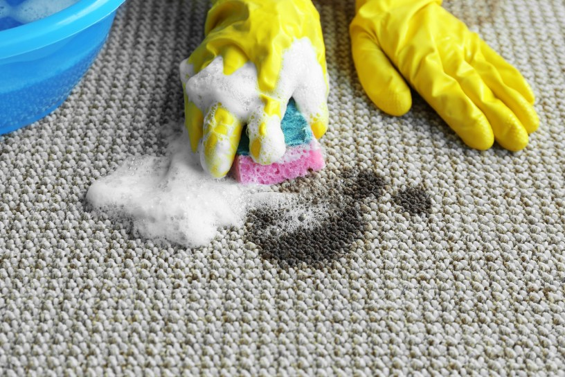 Carpets and upholstery stains need to be properly identified to ensure the correct cleaning method is taken