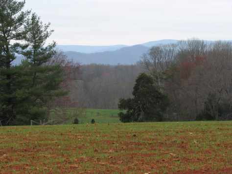 View of Blue ridge Mountains in Earlysville