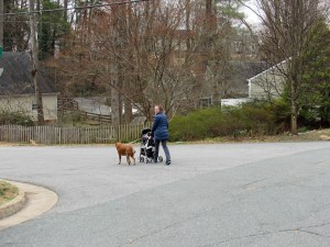 Mother, baby, and dog on a winter's walk