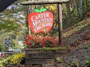 Discover Charlottesville with Realtor Virginia Gardner 434=981=0871