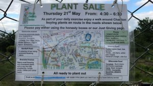 Plant sale ad at allotments
