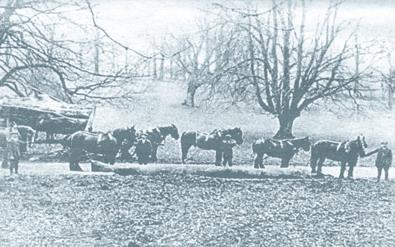 1920s transport