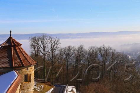 Hochnebel_Altenburg 046_wz