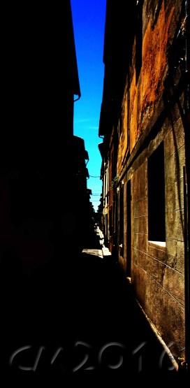 Avignon, autor: charlotte moser