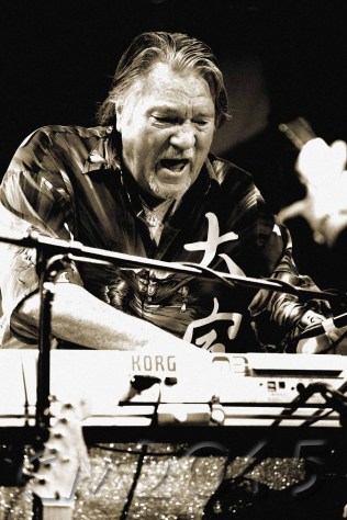 Brian Auger, Autor: Charlotte Moser