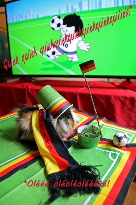 WM-Meerschweinchen, autor: charlotte moser
