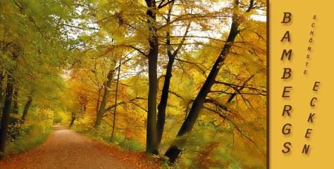 Herbstpostkarte aus Bamberg, Autor: Charlotte Moser
