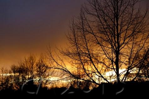 Sonnenuntergang1, Autor: Charlotte Moser