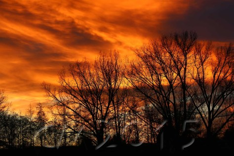 Sonnenuntergang5, Autor: Charlotte Moser
