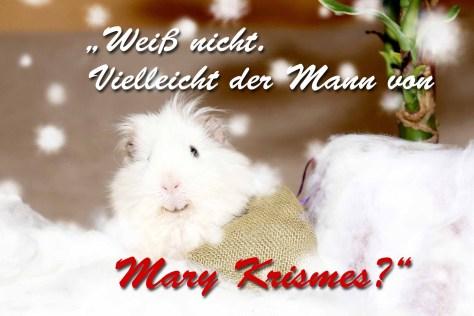 Weihnachtsklapp-Postkarte Rückseite, Autor: Charlotte Moser