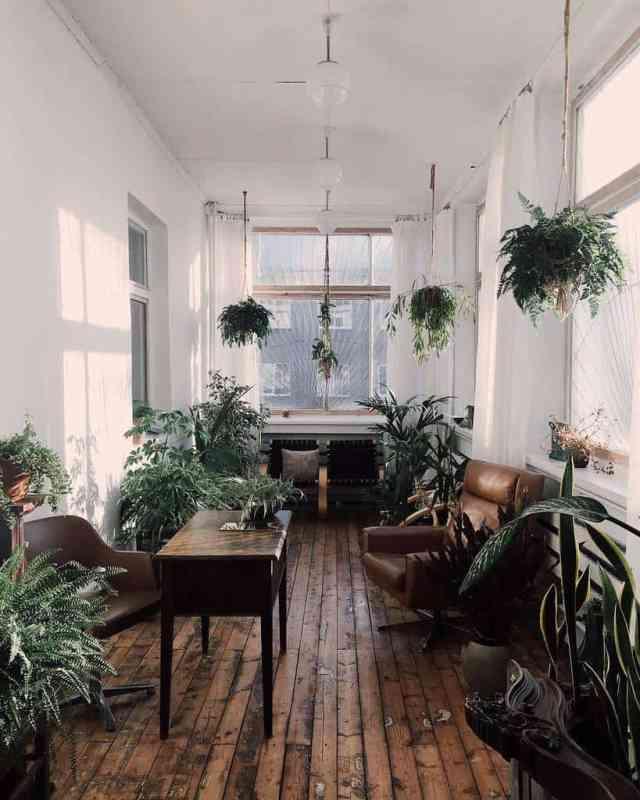 オフィス屋内庭園アイデアギルド