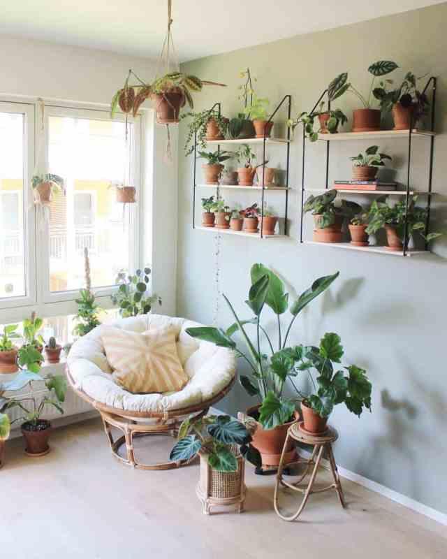 壁の棚と壁のプランター屋内庭のアイデアplantenerd