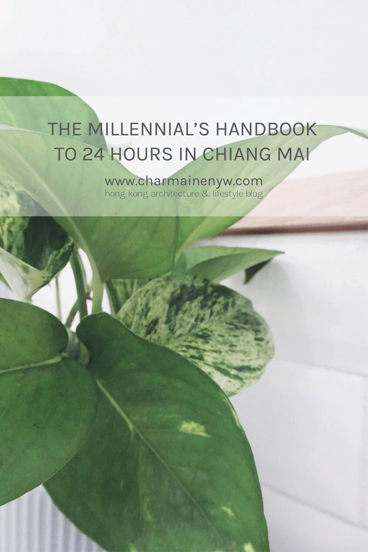 The Millennial's Handbook to 24 Hours in Chiang Mai