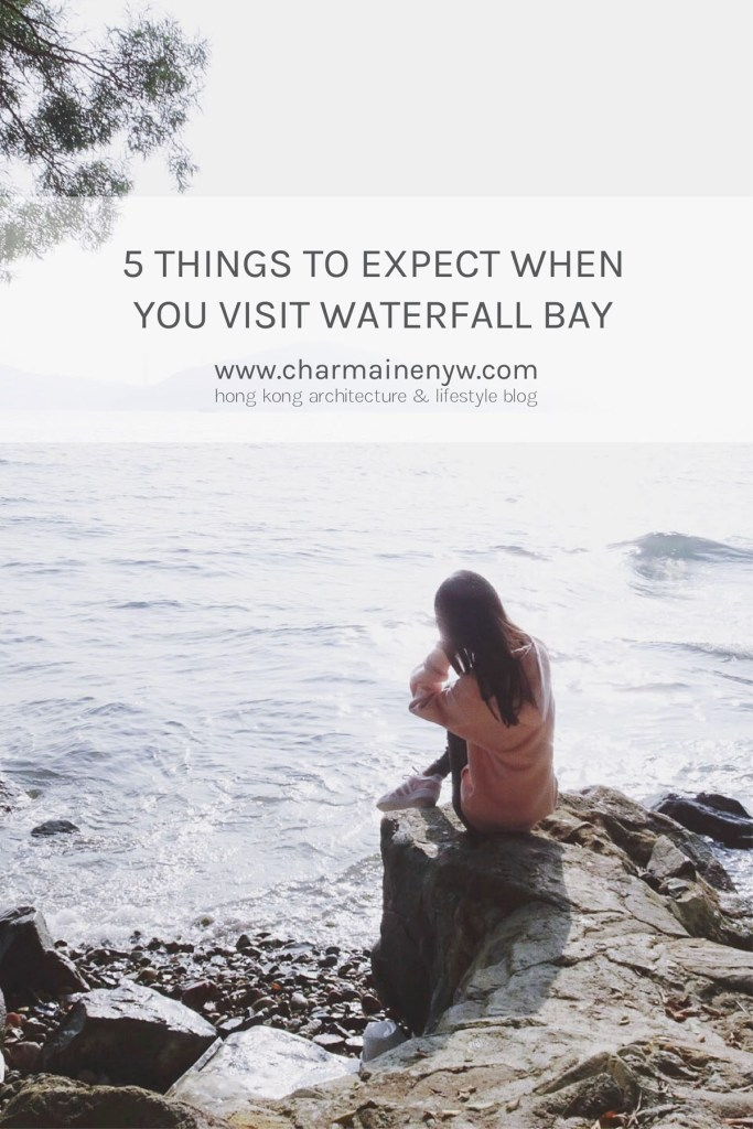 5 Things to Expect When You Visit Waterfall Bay
