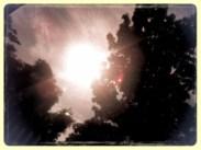 20120823-124137.jpg