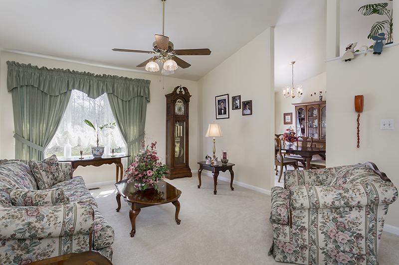 Halethorpe MD Living Room