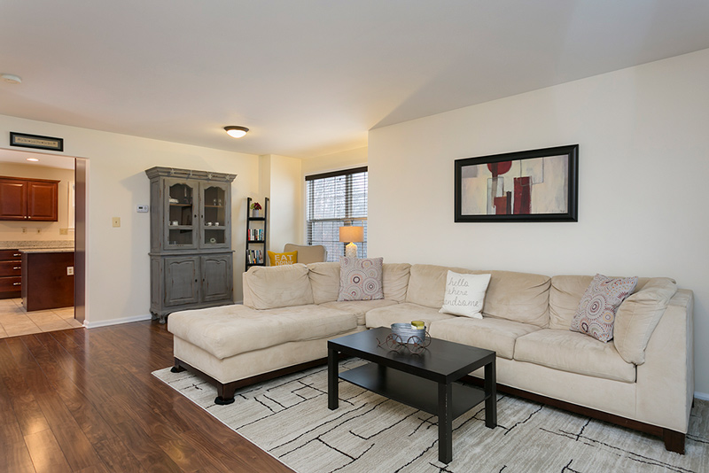 Reisterstown MD living room interior