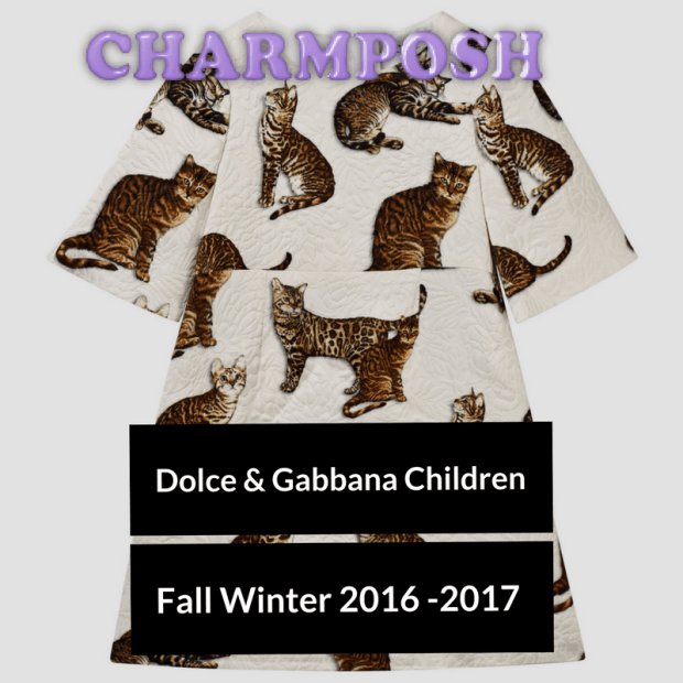Dolce & Gabbana Junior White Cat Print Dress buy now CharmPosh