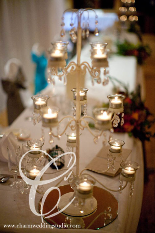 Fairy Light Backdrop Room Draping Entrance Draping