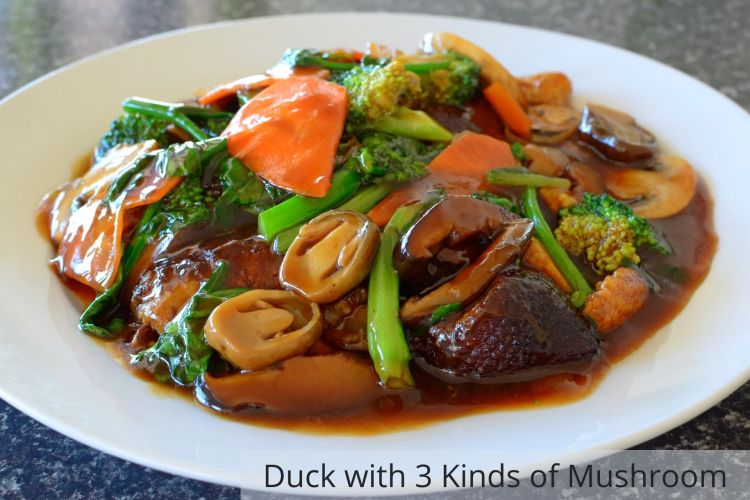 Duck with 3 kinds of mushrooms