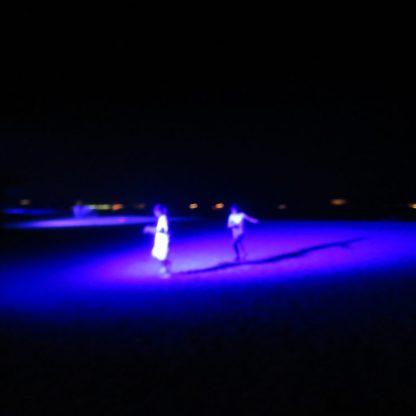 天橋立 ライトアップ 2019