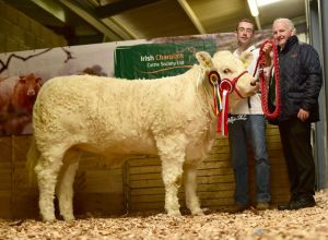 res-senior-female-calf-champion-grangwood-lola-with-gerry-o-keefe-and-president-of-the-iccs-kevin-maguire