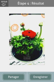L'herbier digital de l'Institut Klorane (4)- Charonbelli's blog lifestyle