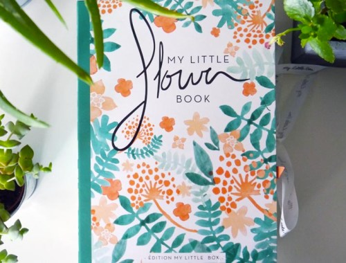 My-Little-flower-book-box-Charonbellis