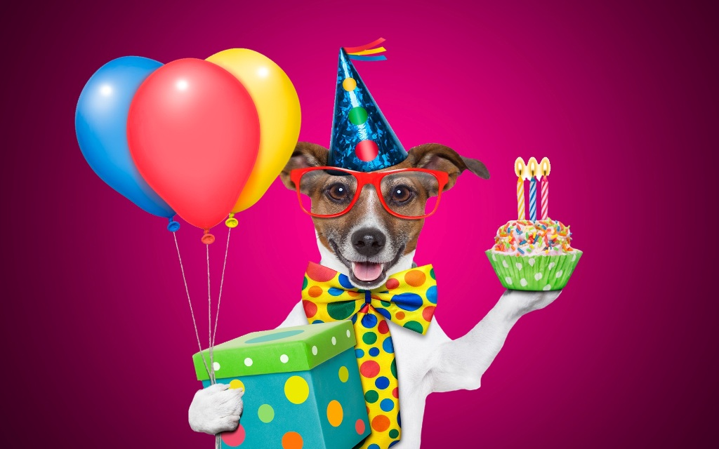 Image of: Greeting Cards Chartcons 107 Funny Birthday Wishes For Your Loved Ones