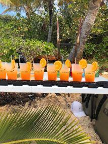 orange-beach-drinks-CC