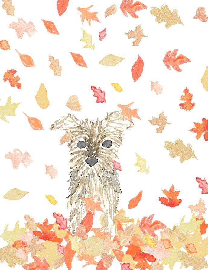 Yorkie Fall Leaves