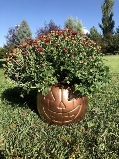 6 Plastic Pumpkin Bucket Makeovers by Chas' Crazy Creations