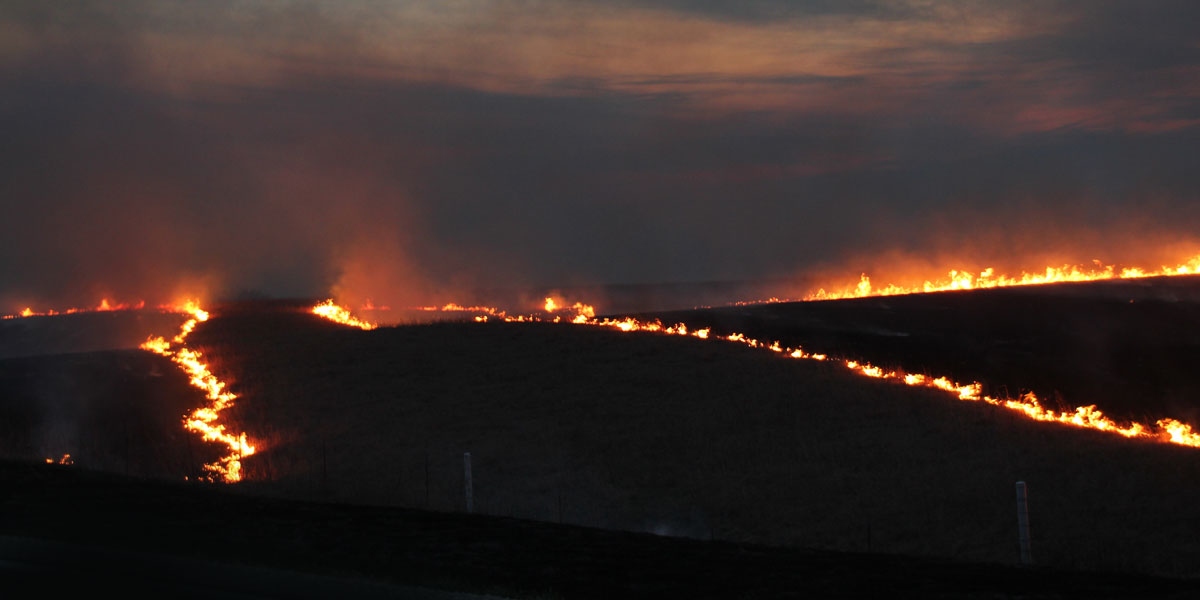 Its Spring And Fire Is Prairies Friend >> Prairie Burn Viewing Chase County Kansas Find Yourself Here