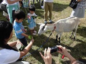 六呂師高原アルプス音楽祭2014 白やぎさんに葉っぱをあげるボクちゃん/どこまでもアマチュア