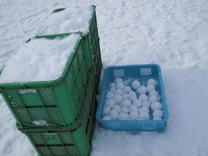 さかだに雪まつり トレイに準備された雪玉/どこまでもアマチュア