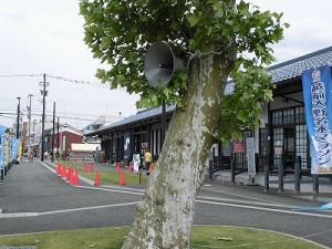 第51回越前大野名水マラソン 樹木に設置されたトランペットスピーカー/どこまでもアマチュア