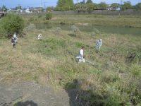 除草に精を出すボランティア
