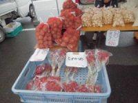 上庄の里芋とタカノツメ