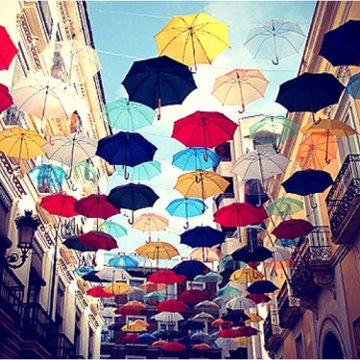 rainy day umbrella curiositie