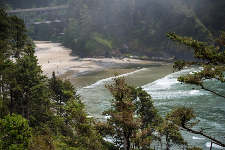 Waves, beach, and a bridge in the background, with trees in the foreground.