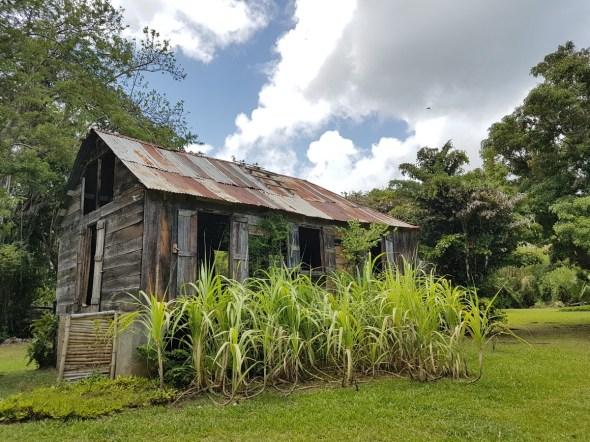 The old farmhouse at Balenbouche Estate