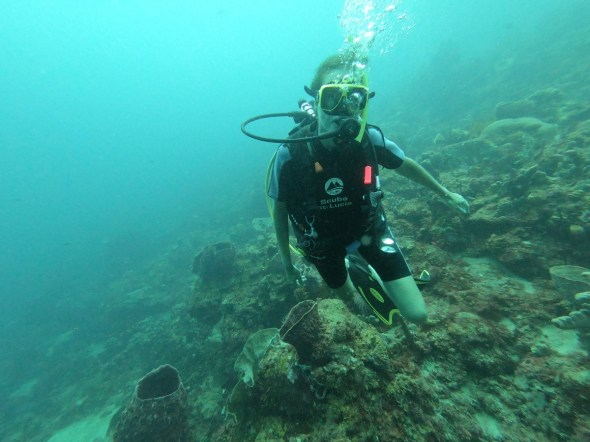 Diver at Anse Chastanet, St Lucia